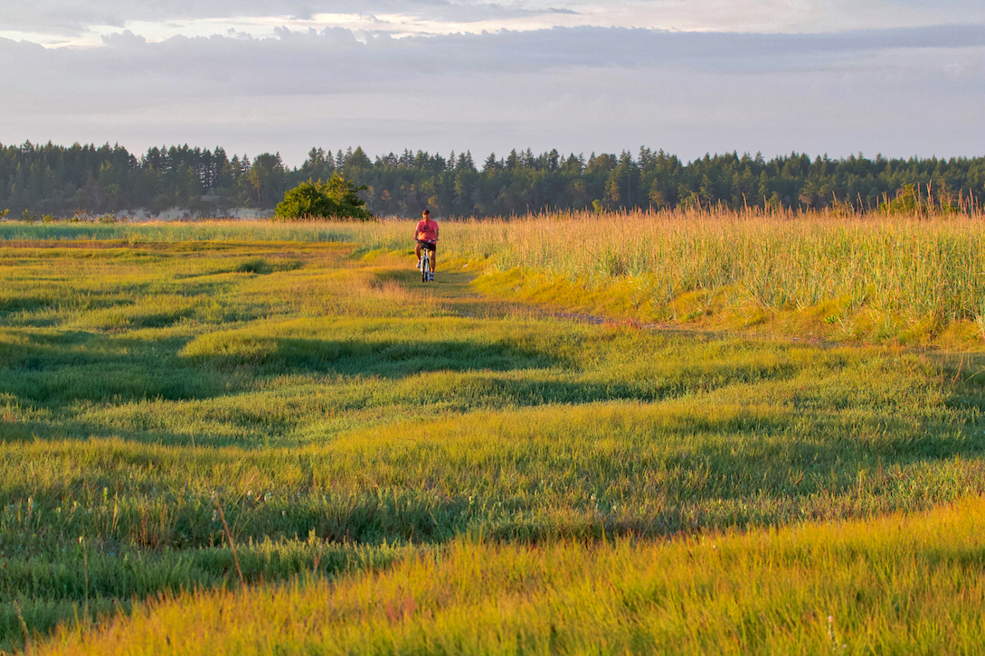 Cyclist on Cordova Spit, Vancouver Island