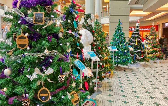 Festival of Trees, Bay Centre