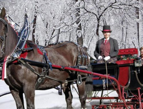 HOLIDAY SLEIGH RIDES!