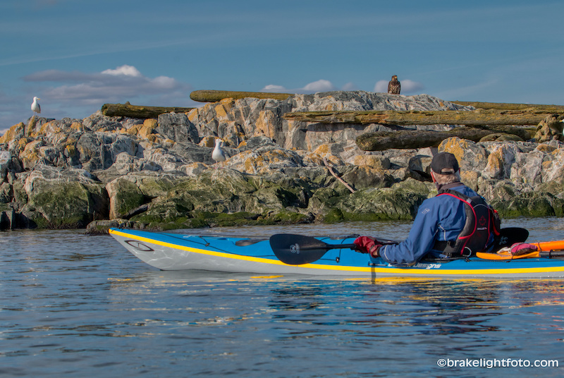 Sea kayaking Great Chain Islets