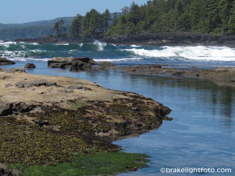 Botanical Beach, Port Renfrew, BC